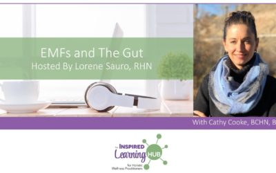 EMFs and The Gut