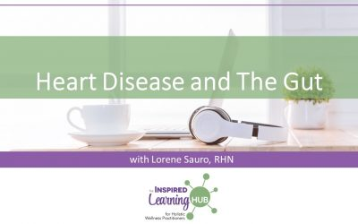 Heart Disease And The Gut
